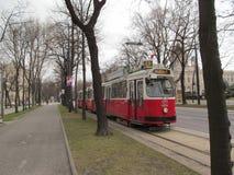Wien-Tram Stockbilder