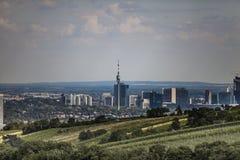 Wiena panorama Arkivfoto