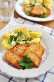 Wiener Schnitzel Royalty Free Stock Photos