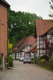 Wienhausen-Kleinstadt Deutschland-Parkbaumblume lizenzfreies stockfoto