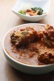 Wieprzowina Chłodny curry non-veg naczynie od Goa, India obrazy stock