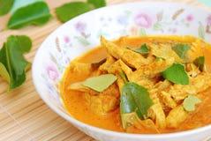 Wieprzowina curry Obraz Royalty Free