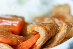 Wieprzowina curry Zdjęcie Stock