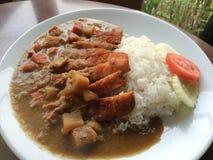 Wieprzowina curry Fotografia Royalty Free