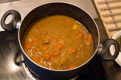 Wieprzowina curry'ego zupny Japoński styl obraz stock