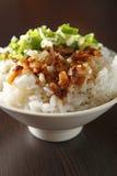 wieprzowina ryż chińscy karmowi ryż Zdjęcie Stock