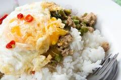 Wieprzowina smażył ryż z basilu Popularnym jedzeniem Tajlandia zdjęcia royalty free
