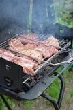 Wieprzowiny mięso smaży na grillów skewers Fotografia Stock
