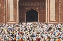 wierna islamska modlitwa Fotografia Stock