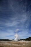 wierny krajowy stary parkowy Yellowstone Zdjęcie Royalty Free