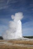 wierny krajowy stary parkowy Yellowstone Fotografia Royalty Free