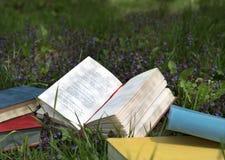 Wiersza książkowy lying on the beach na polu z dzikimi kwiatami fotografia stock