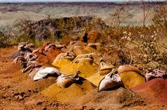 Wiertniczy eksploraci Assay Zdojest Pilbara, Australia - fotografia stock