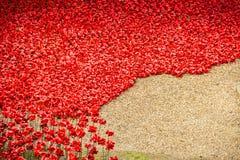 Wierza Londyn Makowy pokaz WW1 Fotografia Royalty Free