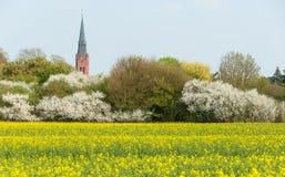 Wierza St. Martin w Nienburg zdjęcie stock