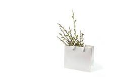 Wierzb gałązki odizolowywać na białym tle w wazie Zdjęcia Stock