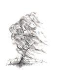 Wierzbowy drzewo w wiatrowym Japońskiego stylu sumi-e atramentu obrazie royalty ilustracja