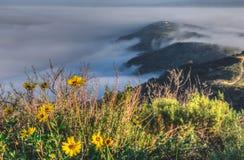 Wierzchołek Światowy Mgłowy wzgórze Fotografia Stock