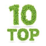 Wierzchołka 10 tekst zieleni liście Obraz Stock