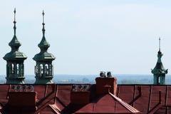 Wierzchołki katedry i kościół nad dachami w Przemyskim, Polska Fotografia Royalty Free