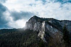 Wierzchołek depresja kamienia góry w lesie Zdjęcie Royalty Free