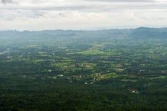 Wierzchołek lasowy widok Obraz Stock