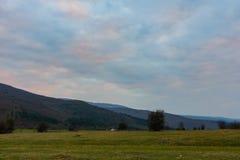 Wiese, Büsche und Berge Stockfotografie