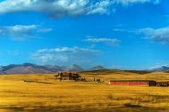 Wiese Chinas Bayinbuluke in Xinjiang Stockbilder