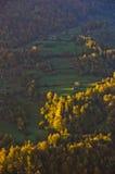 Wiese illumintad durch Strahl des Lichtes bei Herbstsonnenaufgang stockfoto