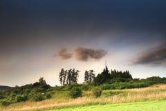 Wiese mit Bäumen und Wolken Lizenzfreies Stockbild