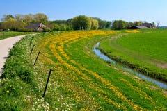 Wiese mit Bauernhöfen in der Landschaft Stockfoto