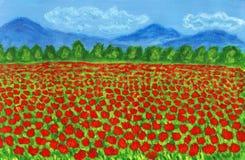 Wiese mit den roten Mohnblumen, malend Stockfotos