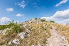 Wiese mit Felsen und Baum unter dem blauen Himmel - gestalten Sie auf kleinem Berg landschaftlich Lizenzfreie Stockbilder
