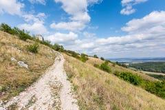 Wiese mit Felsen und Baum unter dem blauen Himmel - gestalten Sie auf kleinem Berg landschaftlich Lizenzfreies Stockfoto