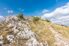 Wiese mit Felsen und Baum unter dem blauen Himmel - gestalten Sie auf kleinem Berg landschaftlich Lizenzfreies Stockbild