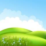 Wiese mit Gras 2 Lizenzfreie Stockfotos