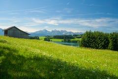 Wiese mit Häuschen nahe dem See Forggensee Lizenzfreies Stockbild