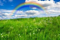 Wiese mit Regenbogen Stockfoto