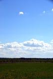 Wiese mit Wald im Hintergrund auf einem Hintergrund des klaren Himmels stockfotografie