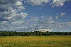 Wiese mit Wald und drastischer bewölkter Himmel im Hintergrund lizenzfreie stockfotos