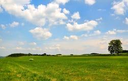 Wiese mit weißen Wolken auf blauem Himmel Stockfotos
