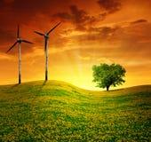 Wiese mit Windturbinen Stockfoto