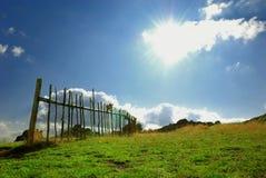 Wiese mit Zaun und blauem Himmel Stockbild