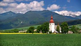 Wiese und alte Kirche Stockfoto