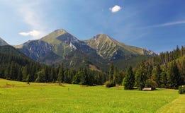 Wiese und Berg Stockfoto