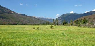 Wiese und Berge Stockfoto