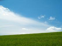 Wiese und blauer bewölkter Himmel Lizenzfreies Stockfoto