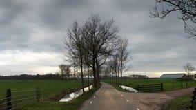 Wiese und countryroad an der Dämmerung im regnerischen Wetter Stockfotografie