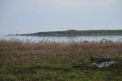 Wiese und die Insel im Meer lizenzfreies stockbild
