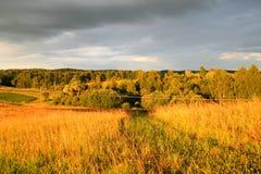 Wiese und Wald am Sonnenuntergang Lizenzfreie Stockfotos